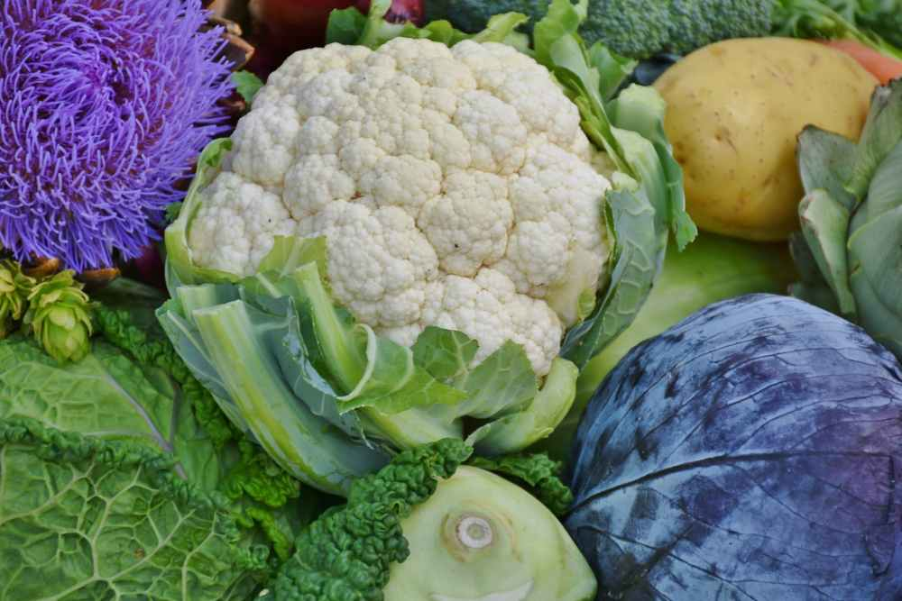 cauliflower food fresh ingredients